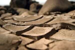 dirt in commercial buildings
